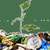 организации по утилизации вторсырья и целлюлозно-бумажные предприятия